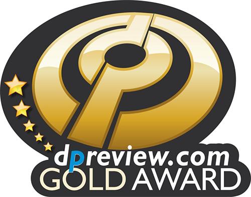 DP Gold Award