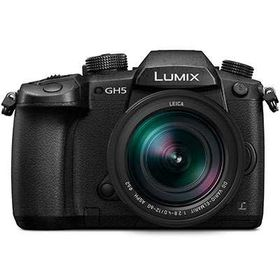 Panasonic LUMIX GH5 + 12-60mm f/2.8-4 OIS